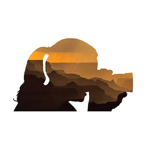 "Logo of Ann Newman's silhouette and a photo inserted inside from the Grand Canyon called ""Shadow Traits."""