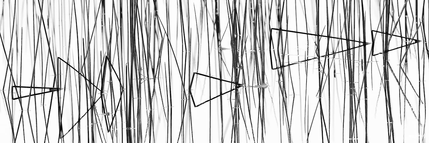 Black and white reed photo