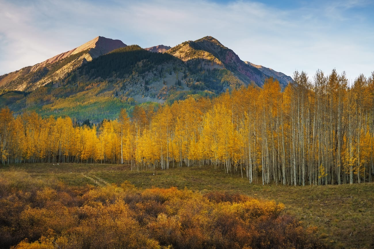 Gothic mountain with foreground of aspens in fall.