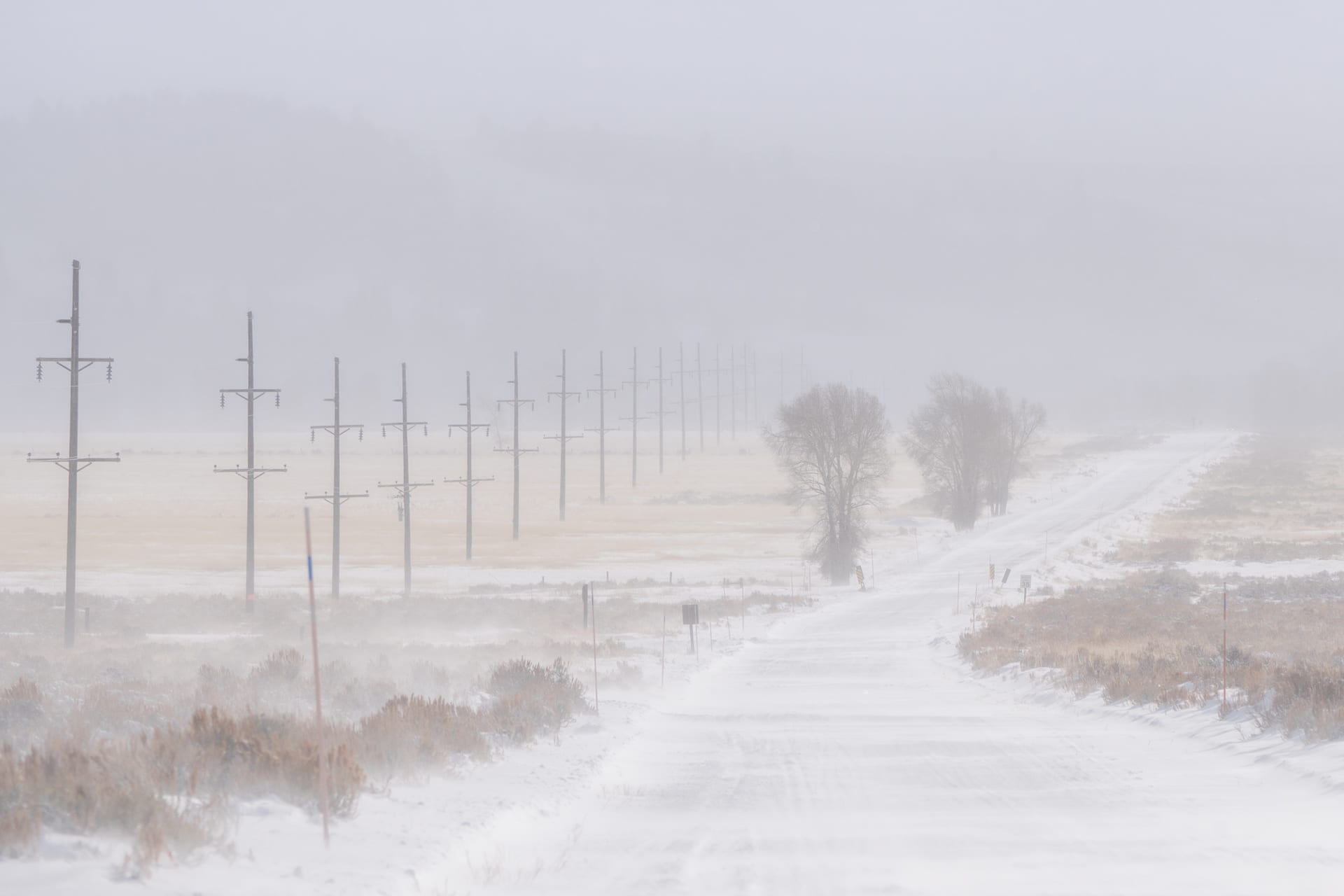 Low visibility on a road with snow.