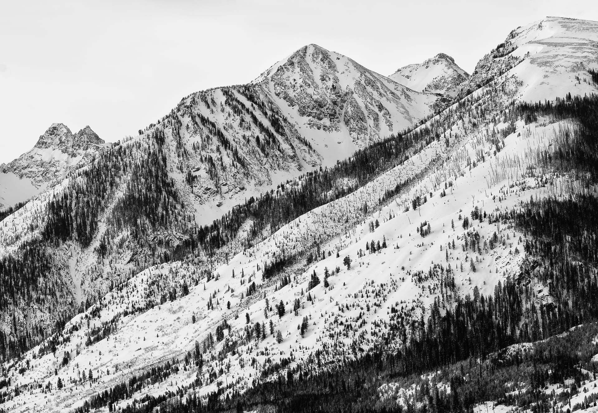 Close up in black and white of Mount Moran.